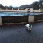 Open air swimming pool.