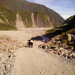 Fox Glacier Hiking Trails Foto