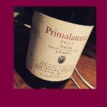 Il mitico vino di Salvatore Martusciello