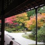Sennyuji Temple Foto