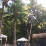 The jungle bar on Anse Mamin.