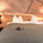 Hotel Garni Chesa Mulin Foto