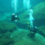 Foto de Koox Diving