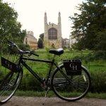 Gonville bikes
