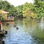Photo of Shenzhen Wild-life Zoo