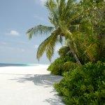 Photo of COMO Cocoa Island