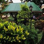 Photo de Springlands Hotel