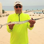 Needle Fish caught on Solmar Beach