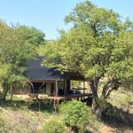 Garonga Safari Camp Foto