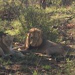 Foto van Garonga Safari Camp