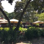The beautiful gardens where we had lunch