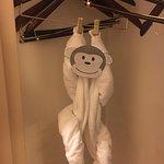 Monkey hanging in closet, so cute!