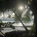 Foto de Blue Osa Yoga Retreat and Spa