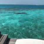 Photo de Diamonds Thudufushi
