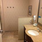 Photo of Hampton Inn & Suites Washington-Dulles International Airport