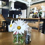 Daisies to keep your cuppa company while you browse the gallery