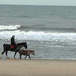 صورة فوتوغرافية لـ Strand van Katwijk aan Zee