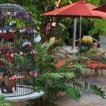 Tropical Inn Foto