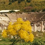 The Odeon-Bouleuterion
