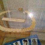 display in crazy horse museum