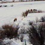 Photo de Heart Six Guest Ranch