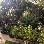 Photo of Pelwehera Village Resort