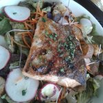 Fresh Grilled Rainbow Trout over Salad