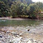 Foto de Ecolodge Bukit Lawang