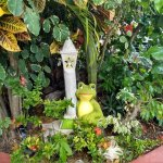 Photo of Coco's Cabanas