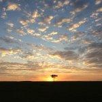 Sunrise on the Masai Mara while out on game drive.