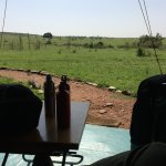 Looking out over the Masai Mara from the porch of our tent.