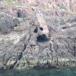 Photo of Marlin Adventures