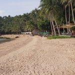 Photo of Palm Leaf Resort