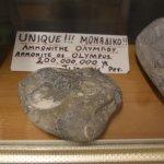 Foto de Geological History Museum Olympus