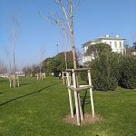 Photo of Caddebostan Dalyan Park