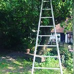 Gorgeous vintage Apple ladder to