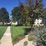 Photo de Best Western Plus Loveland Inn