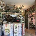 ภาพถ่ายของ Lilies Garden