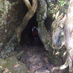 Photo of Rangitoto Island