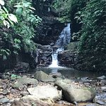Foto de Oxygen Jungle Villas