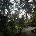 Foto de Baan Manali Resort