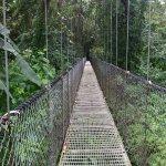 Puentes Colgantes del Arenal Foto