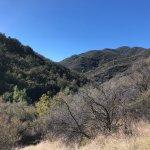 View along hike