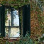 Photo of Jardin Milenio