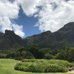 Photo of moyo Kirstenbosch