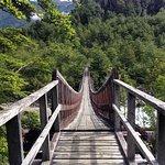 Photo of Queulat National Park