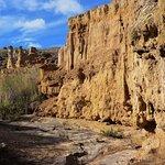 Photo of Desierto de la Tatacoita