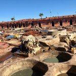 Tanneries Foto