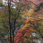 昇仙峡の遊歩道から撮った紅葉