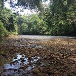 Sungai Taman near Late Berkoh